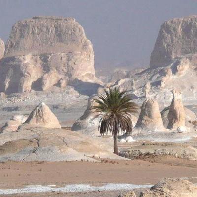El Bahriya Oasis Black & White Desert